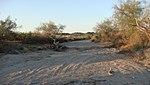 Estrella Mountain Ranch - panoramio - Grant Berg (4).jpg