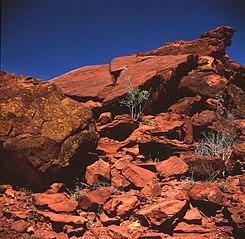 Ewaninga rock carvings