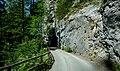 Fahrweg einspurig vom Nenzinger Himmel (1367 m ü.M.) durch das Gamperdonatal nach Nenzing, Vorarlberg.jpg