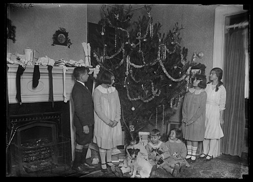 Family group with Christmas tree LCCN2016887036