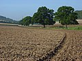Farmland, Stokenchurch - geograph.org.uk - 995771.jpg
