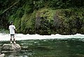 Fishing Clackamas River Mt Hood National Forest (35502786214).jpg
