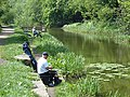Fishing on the Fairbottom Branch Canal - geograph.org.uk - 798976.jpg