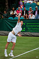 Flickr - Carine06 - Andy Murray (14).jpg