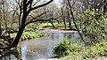 Flint Creek in Springtown, Arkansas.jpg
