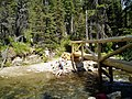 Florence Falls Bridge on The Gunsight Pass Trail as the Florence Falls Creek rapidly drains downhill into the calm Saint Mary River and Valley beginning its unique journey north to the Artic Ocean, Glacier National Park - panoramio.jpg