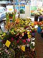 Flower Market P1080985.JPG
