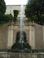 Fontana del Drago 09.TIF