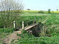 Footbridge On Spring Meadow - geograph.org.uk - 1260530.jpg