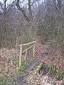 Footbridge into Hall Wood - geograph.org.uk - 1178298.jpg