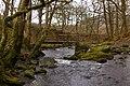 Footbridge over Glenderaterra Beck - geograph.org.uk - 823495.jpg