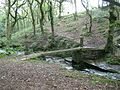 Footbridge over River Clydach near Rhos - geograph.org.uk - 1478966.jpg
