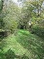 Footpath - geograph.org.uk - 278594.jpg