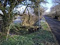 Footpath and Bridge from Harrold-Lavendon Road - geograph.org.uk - 337473.jpg