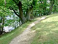 Footpath by the shore of Crummock Water - geograph.org.uk - 880166.jpg