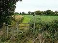 Footpath to Wickhamford - geograph.org.uk - 1513889.jpg