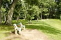 Forest Park, Springfield, MA 01108, USA - panoramio (71).jpg
