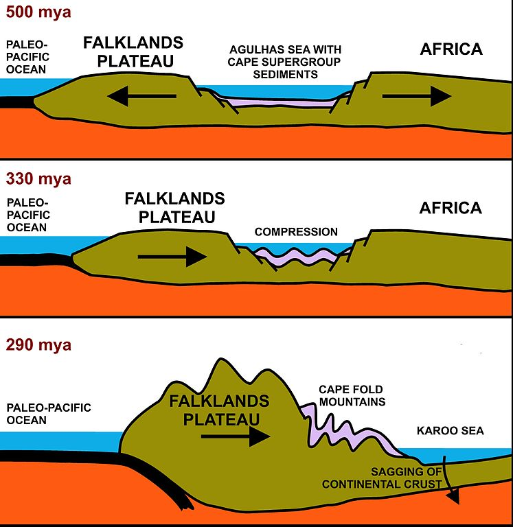Fileformation Of Cape Fold Mountainsg Wikimedia Commons