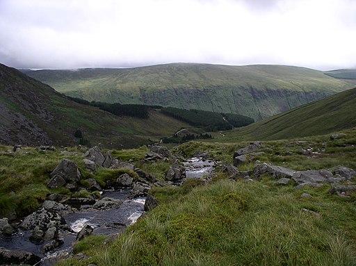 Fraughan Rock Glen - geograph.org.uk - 290239