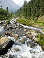 Fresh water gushing through alpine meadows a view to behold ! Beauty at its best!!.jpg
