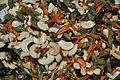 Fried Vegetable Ingredients 5992.JPG