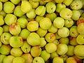 Froita-Albaricoque.jpg