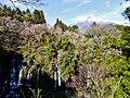 Fujinomiya Shiraito-Wasserfall & Fuji-san 5.jpg