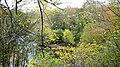 Gadgirth Holm view, River Ayr, South Ayrshire, Scotland.jpg