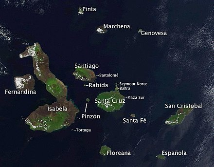 Satellite photo of the Galápagos islands overlaid with the names of the visible main islands. Galapagos-satellite-esislandnames.jpg