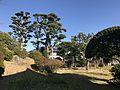 Garden of Former Residence of Nabeshima Family in Kojirokuji Area 8.jpg