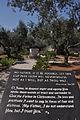 Garden of Gethsemane (7740278210).jpg