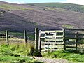 Gate on the Path up Tinto - geograph.org.uk - 1069216.jpg