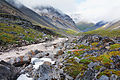 Gates of the Arctic National Park, Brooks Range, Alaska.jpg