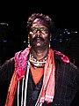 Gavari dance drama character - Meena bandit leader.jpg