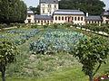 Gemuesegarten im Prinz Georg garten Darmstadt.jpg