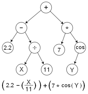 Genetic programming - A function represented as a tree structure.