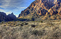 Gfp-texas-big-bend-national-park-mountains-from-the-basin.jpg