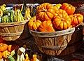 Ghords and Pumpkins 9-13 (15698224870).jpg