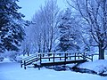 Glenmore Campsite - geograph.org.uk - 952961.jpg