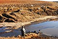 Goat boy - at Maphakheng Leribe - panoramio.jpg