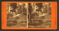 Golden Fish fountain, Fairmount Park, from Robert N. Dennis collection of stereoscopic views.png