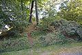 Grabhügel in den Hademarscher Bergen NIK 4248.JPG