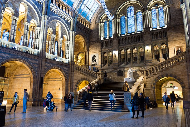File:Grand stairway at London Museum of Natural History (28306674449).jpg