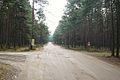 Granica lesnictw Wronki i Potrzebowo.JPG
