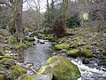 Great Gill Beck, Silsden - geograph.org.uk - 140402.jpg