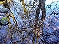 Great Malvern - panoramio (12).jpg