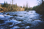 Green River in Kanaskat-Palmer State Park, 01.jpg