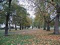 Greenwich Park - geograph.org.uk - 599606.jpg