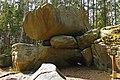 Hängender Stein im Naturpark Heidenreichsteiner Moor.jpg