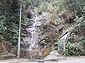 HK ML 半山區 Mid-levels 地利根德里 Tregunter Path waterfall February 2020 SS2 27.jpg